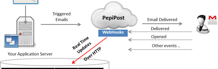 The Basics of Webhooks in Email Delivery | Pepipost